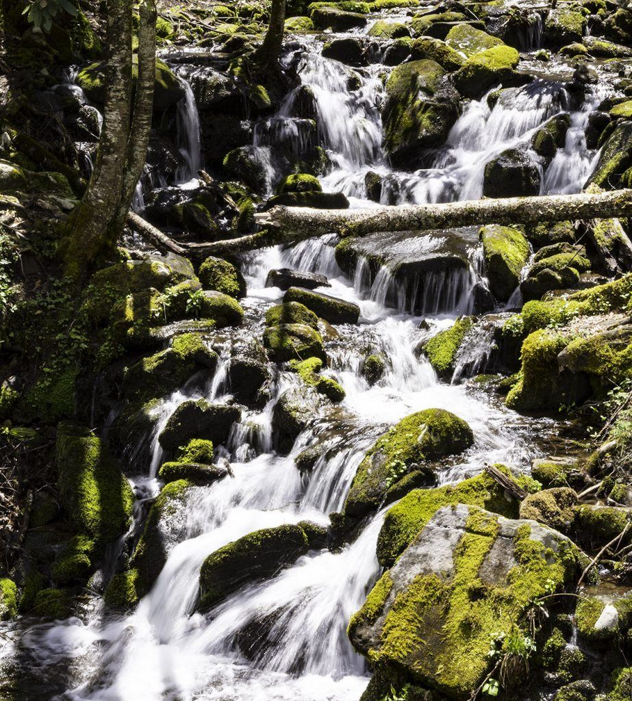 Waterfalls